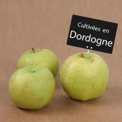 pomme dordogne